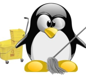 Linux clean